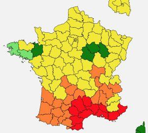 パリ 花粉状況